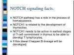 notch signaling facts