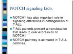 notch signaling facts11
