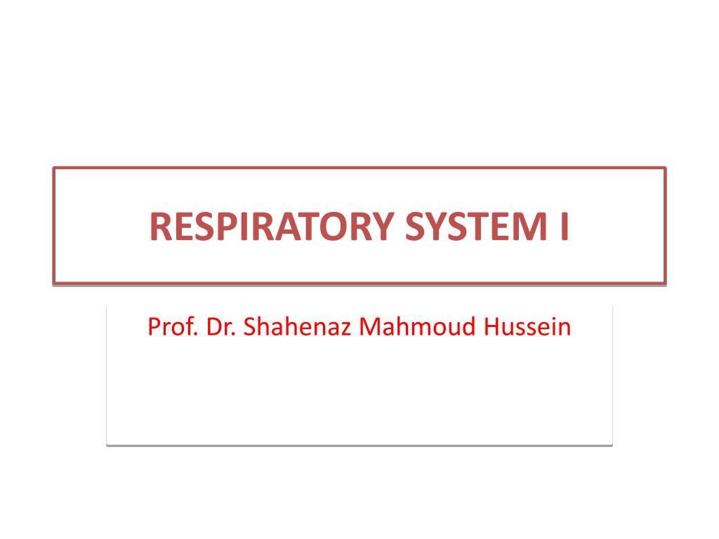 respiratory system i l.