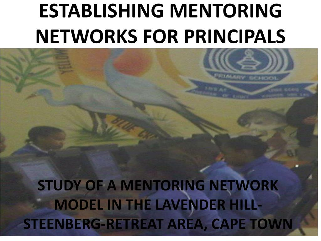 establishing mentoring networks for principals l.