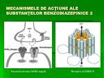 mecanismele de ac iune ale substan elor benzodiazepinice 2