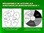 mecanismele de ac iune ale substan elor benzodiazepinice 3