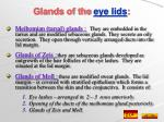glands of the eye lids