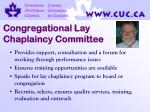 congregational lay chaplaincy committee28