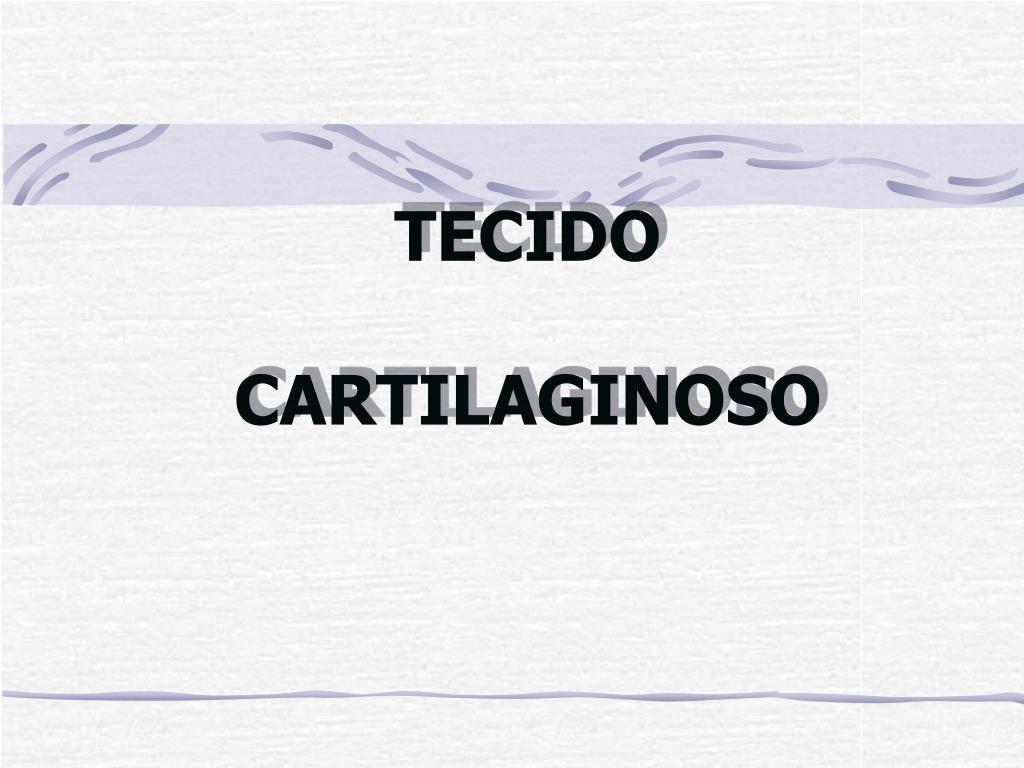 tecido cartilaginoso l.