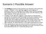 scenario 1 possible answer