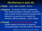mindfulness in daily life