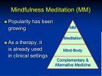 mindfulness meditation mm