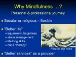 why mindfulness personal professional journey