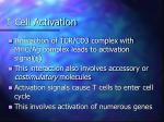 t cell activation
