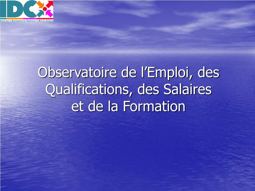 observatoire de l emploi des qualifications des salaires et de la formation l.