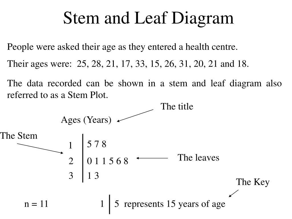 stem and leaf diagram l.