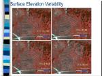 surface elevation variability