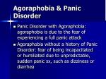 agoraphobia panic disorder