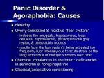 panic disorder agoraphobia causes