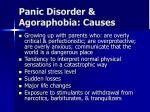panic disorder agoraphobia causes12