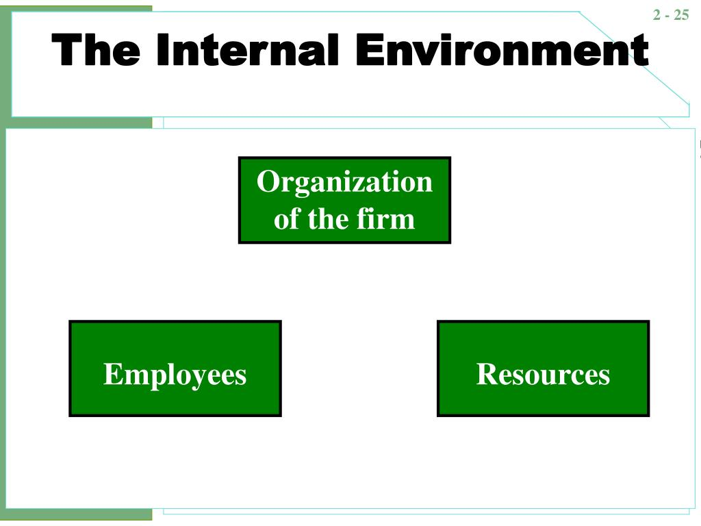 internal and external environment of mc