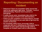 reporting documenting an incident29