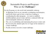 sustainable projects and programs what are the challenges31