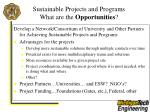 sustainable projects and programs what are the opportunities33