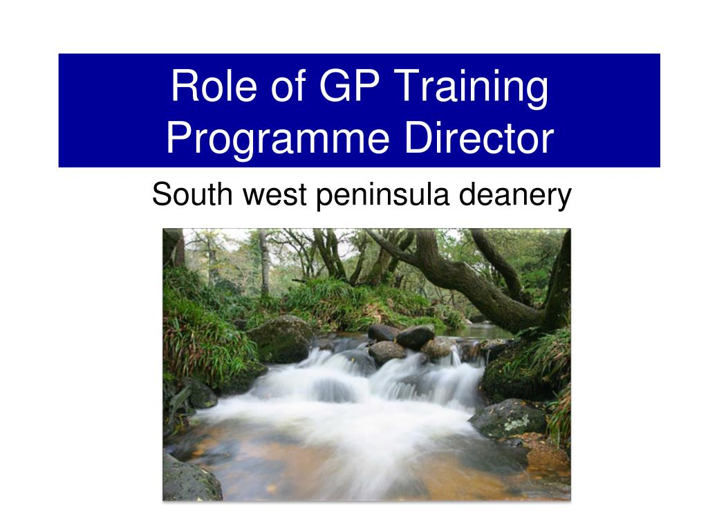 role of gp training programme director l.