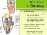 deep group 1 popliteus