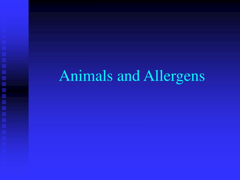 animals and allergens l.