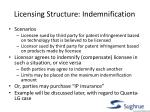 licensing structure indemnification