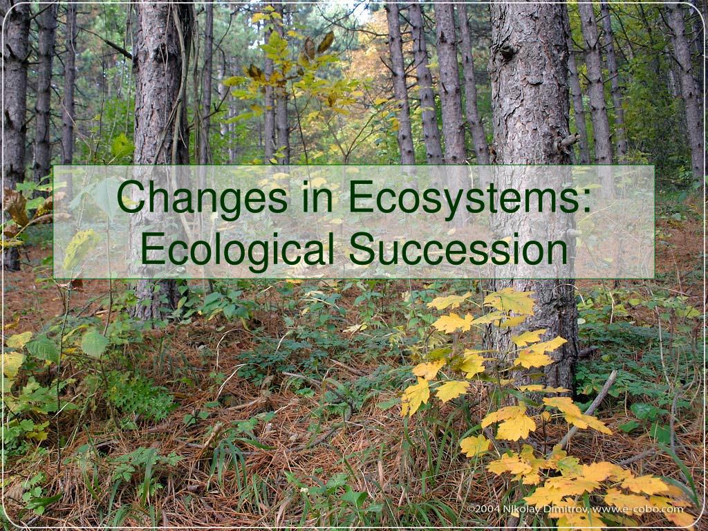changes in ecosystems ecological succession l.