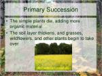 primary succession8
