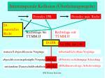 intertemporale kollision berleitungsregeln