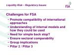 challenges for fsa
