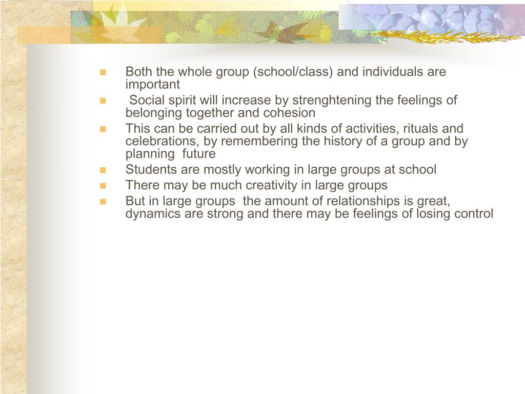 Both the whole group (school/class) and individuals are important