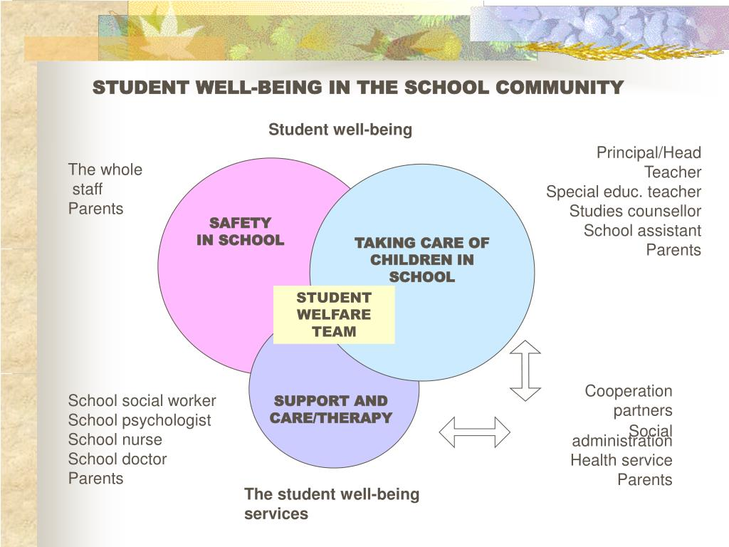 STUDENT WELL-BEING IN THE SCHOOL COMMUNITY