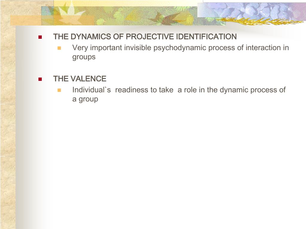 THE DYNAMICS OF PROJECTIVE IDENTIFICATION