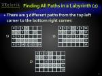 finding all paths in a labyrinth 2