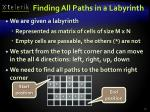 finding all paths in a labyrinth
