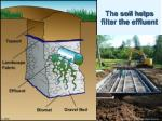 the soil helps filter the effluent