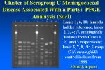 cluster of serogroup c meningococcal disease associated with a party pfge analaysis spe i