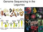 genome sequencing in the legumes