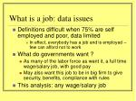 what is a job data issues