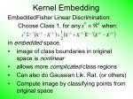kernel embedding68