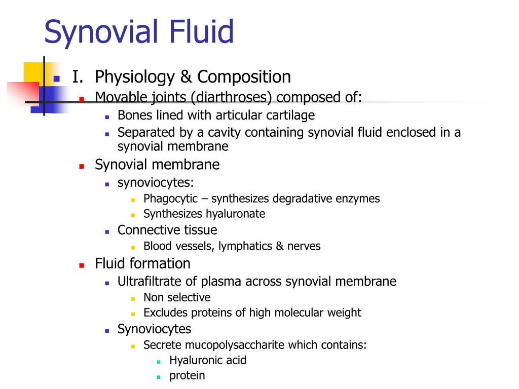 synovial fluid l.