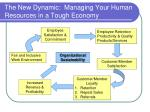 the new dynamic managing your human resources in a tough economy24