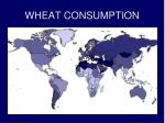 wheat consumption