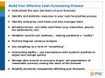 build your effective cash forecasting process