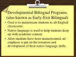 developmental bilingual programs also known as early exit bilingual