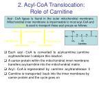 2 acyl coa translocation role of carnitine