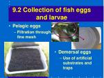 9 2 collection of fish eggs and larvae