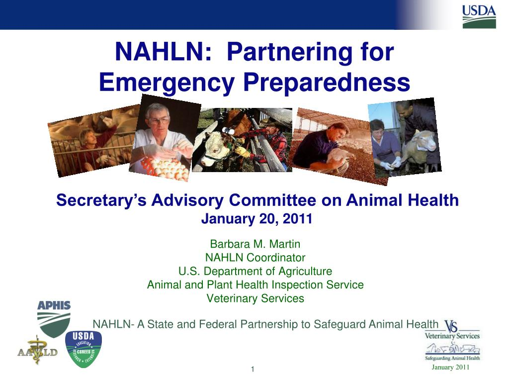 nahln partnering for emergency preparedness l.